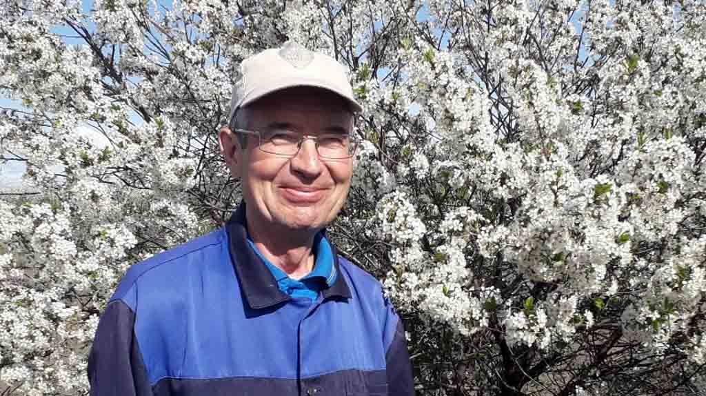 В каждом личном подсобном хозяйстве и садовом участке сейчас пышным цветом зацвели яблони