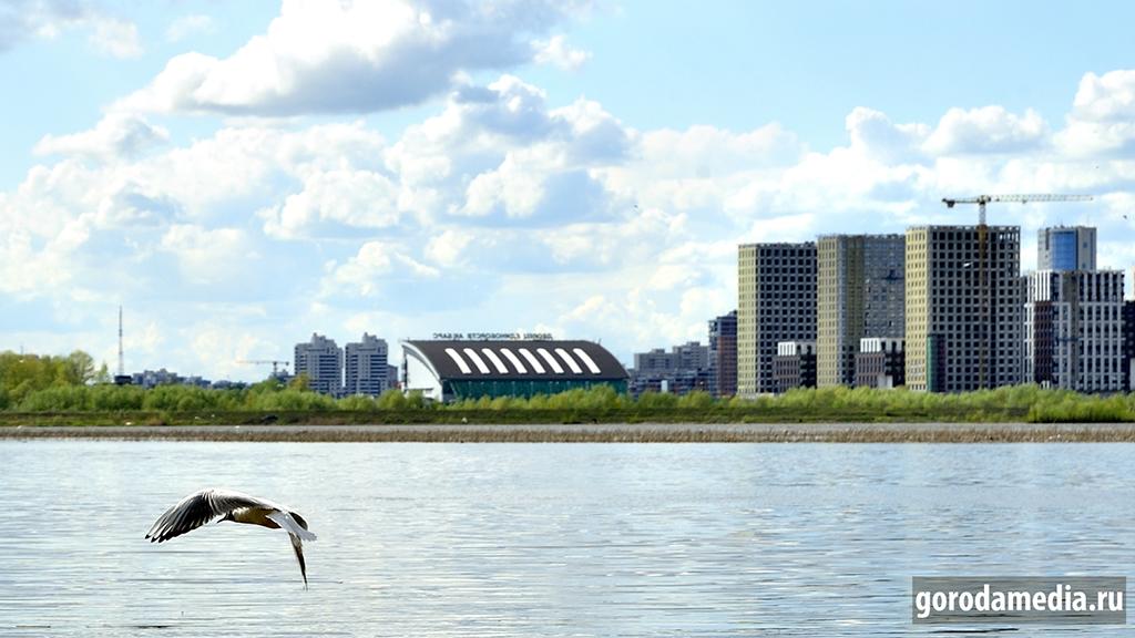 Только чайка свободна в полёте над Казанкой-рекой. И ветер! Фото: Игорь Галиев/gorodamedia.ru