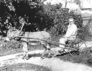 У Фета было особое чувство юмора. Своему ослику он дал кличку Некрасов. Воробьевка. 1890 год. Автор фото неизвестен.